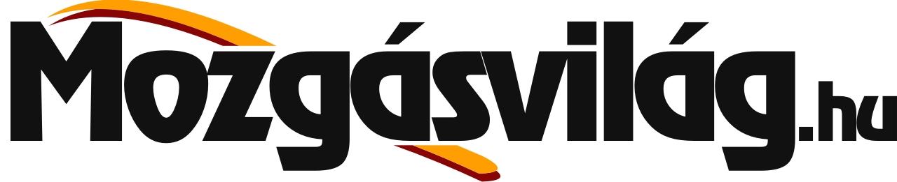 movil_logo2013